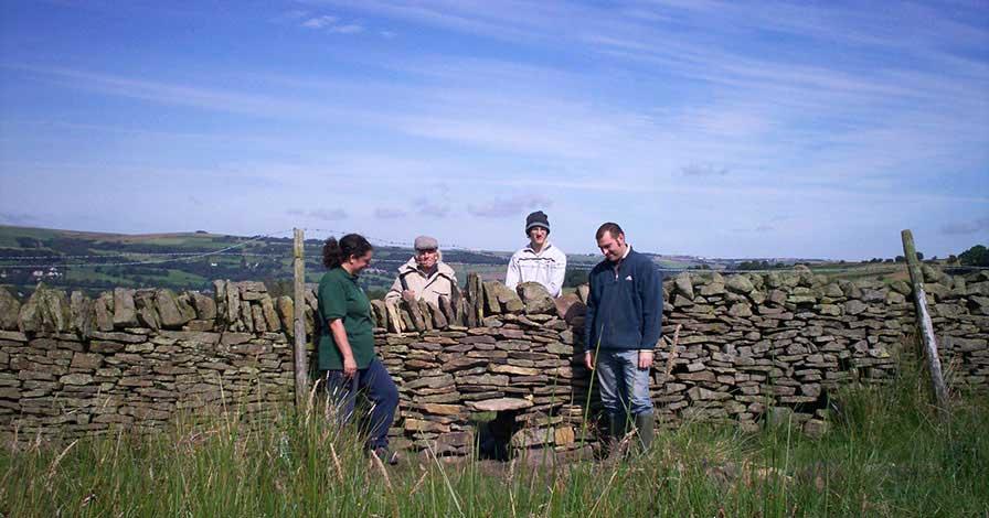 carrs-farm-dry-stone-wall
